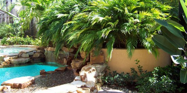 Palms   ALD Architectural Land Design Incorporated - Naples, Florida